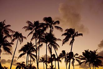 ハワイ島夕焼け