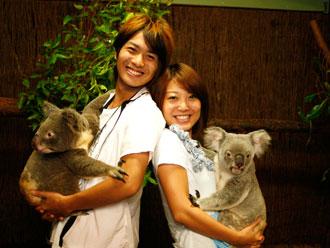 コアラ抱っこイメージ(57)