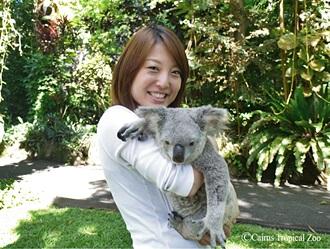 ふわふわかわいいコアラと一緒に記念撮影!