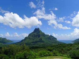 「ハートアイランド」とも呼ばれるタヒチ・モーレア島は、パイナップルの名産地!